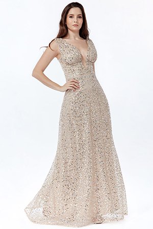 Plunge-V-Neck-Sequin-Maxi-Dress